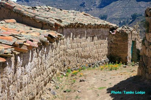 Andamarca村の散歩