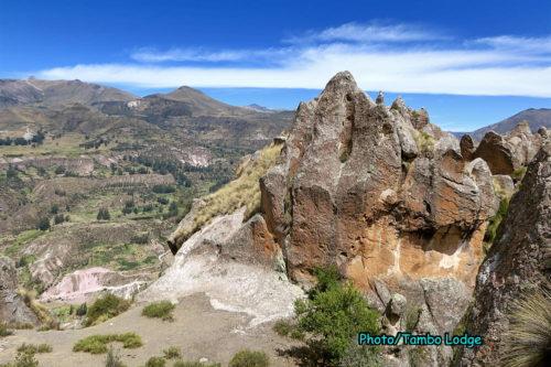 Bosque de Piedra(石の森)