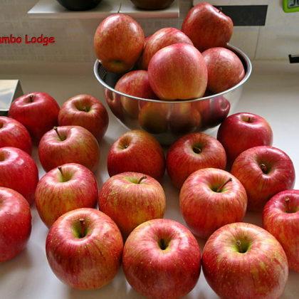 リンゴのジャム作り