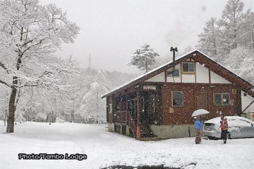春の雪(Nieve de primavera)