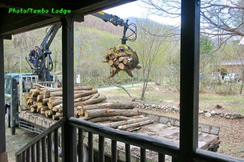 薪作りの季節到来