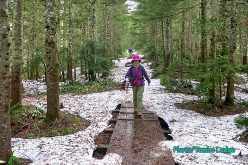 残雪の尾瀬沼一周