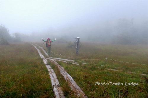 霧深い田代山に登る