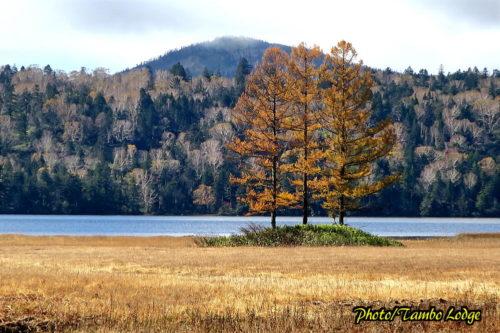 秋深まる尾瀬沼を歩く