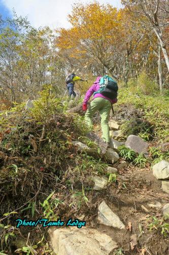 紅葉の社山(しゃざん)に登る
