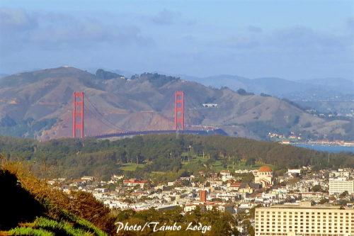 サンフランシスコ一の展望台「ツインピークス」