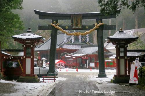 2020年日光へ初詣&自然茶寮 廻meguri