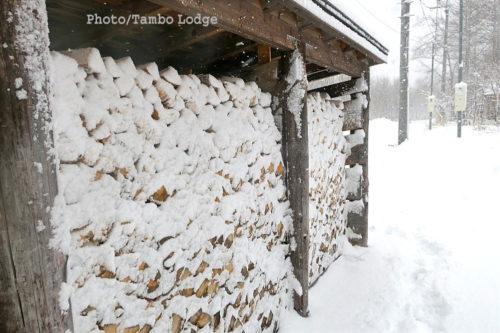 今シーズン初めてのまとまった雪