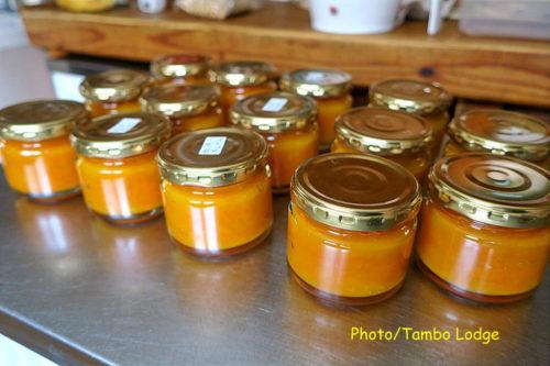金柑のマーマレード作り
