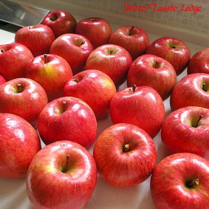オーガニック・リンゴの加工