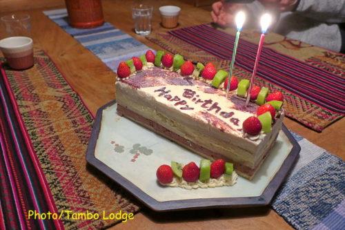 豪華なヴィーガン仕様のアイスケーキ