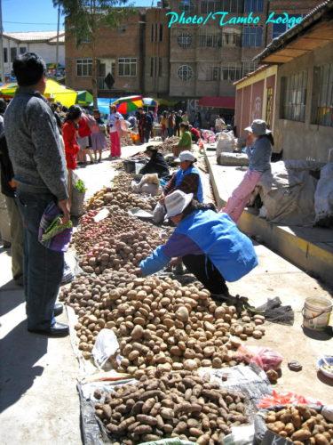 Huancavelicaの日曜市