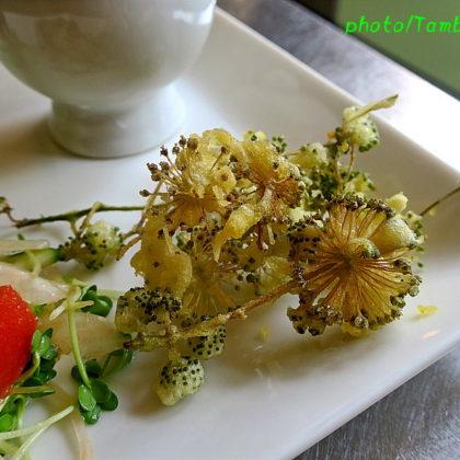 山ウドの花の天婦羅