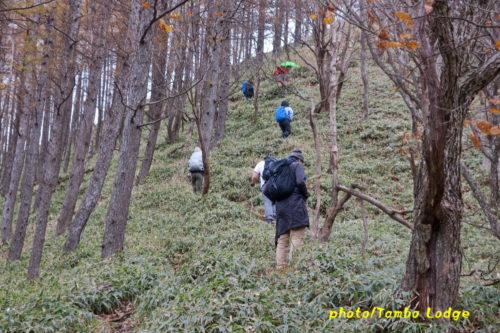 秋の社山に登る
