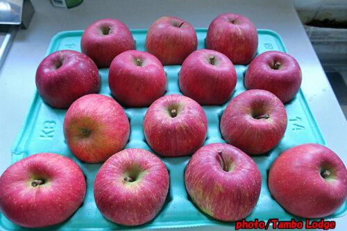 ドライリンゴ作り