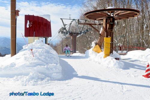 今日はスキー日和