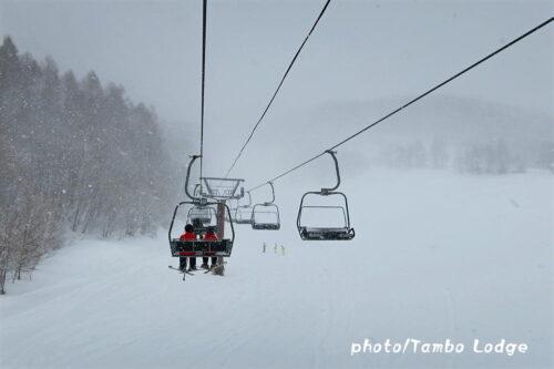 猛吹雪のスキー