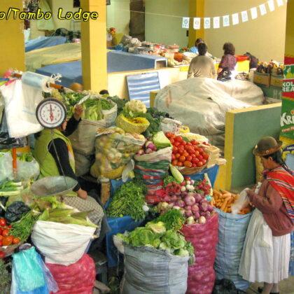 Puno(プーノ)の市場でチューニョを発見!!