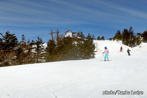 支配人、スキー場の山頂へ行く