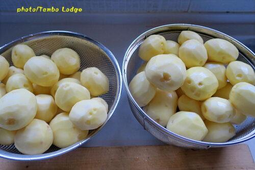 アンデスの保存食、乾燥ジャガイモ「Papa seca」を作る