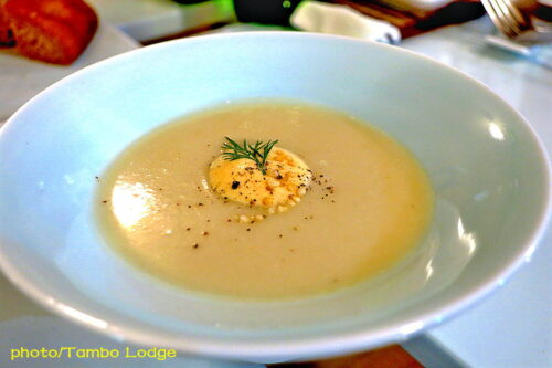 持ち回りの食の研修会21回目は「森の中のお野菜レストラン Cuore Del Sol」