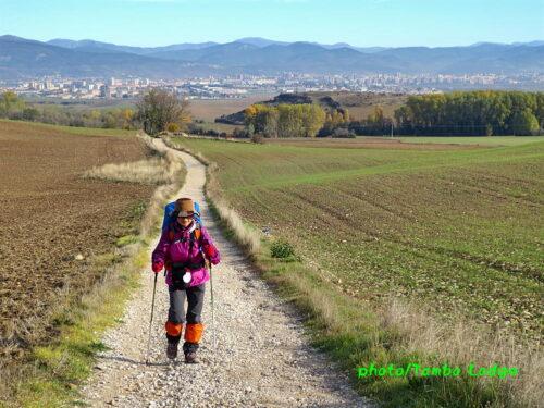 巡礼4日目(Pamplona ⇒ Puente de Reina)24㎞ 無限の大地を歩く