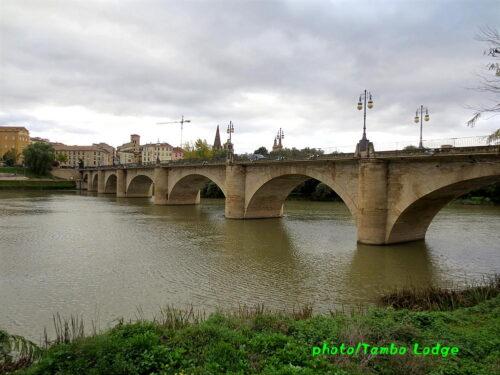 巡礼8日目(Viana ⇒ Navarrete)22㎞ 都会のLogroñoを通過して