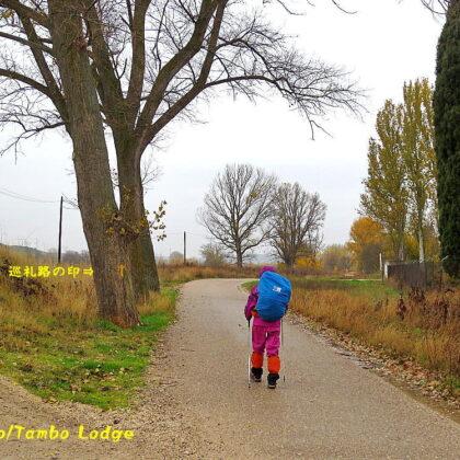 巡礼14日目(Burgos ⇒ Hontanas)32.2㎞ 雨の中、メセタの台地を歩く