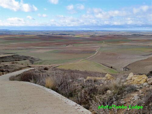 まだまだ続く広大なメセタの大地を行く