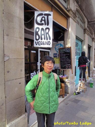 ビーガン・レストラン「Cat bar」