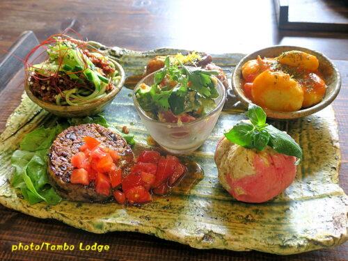 久しぶりに穀物菜食レストラン「穀菜茶房 こと葉」でランチ