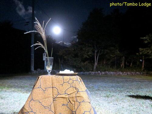 中秋の名月とお月見団子