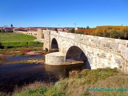 巡礼3日目(Villar de mazarife ⇒ Hospital de Orbigo)15㎞ 伝説の「オルビーゴ橋」を渡る