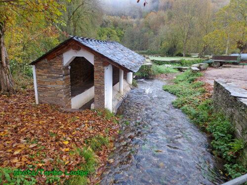 巡礼12日目(Triacastela ⇒ Sarria)25㎞ 川沿いのコース