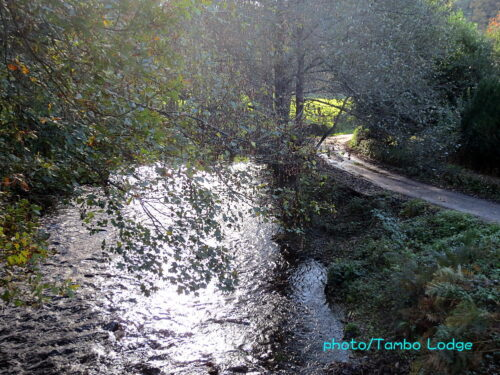 川沿いの静かな巡礼路