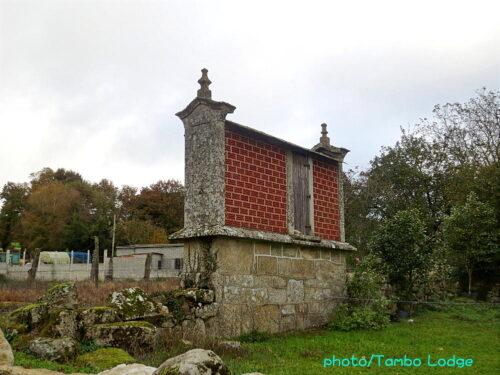 巡礼13日目(Triacastela ⇒ Sarria)25㎞ 聖地まであと100Km