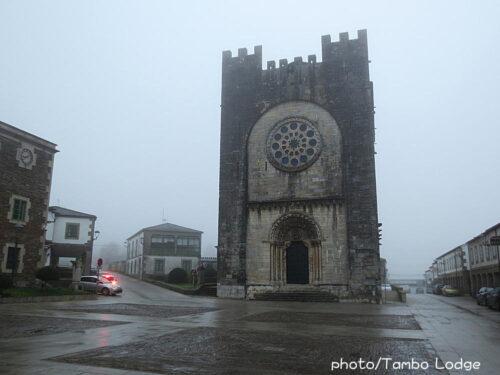 巡礼14日目(Portomarín ⇒ Palas de Rei)26㎞ 起伏の多い田舎道が続く