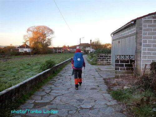 巡礼15日目(Palas de Rei ⇒ Melide)15㎞ 短い距離の日