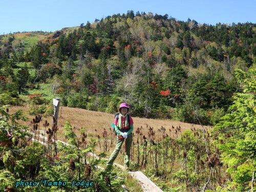 秋の初めの田代山に登る